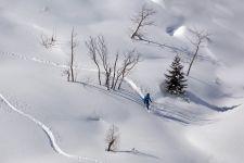 Deskar na snegu